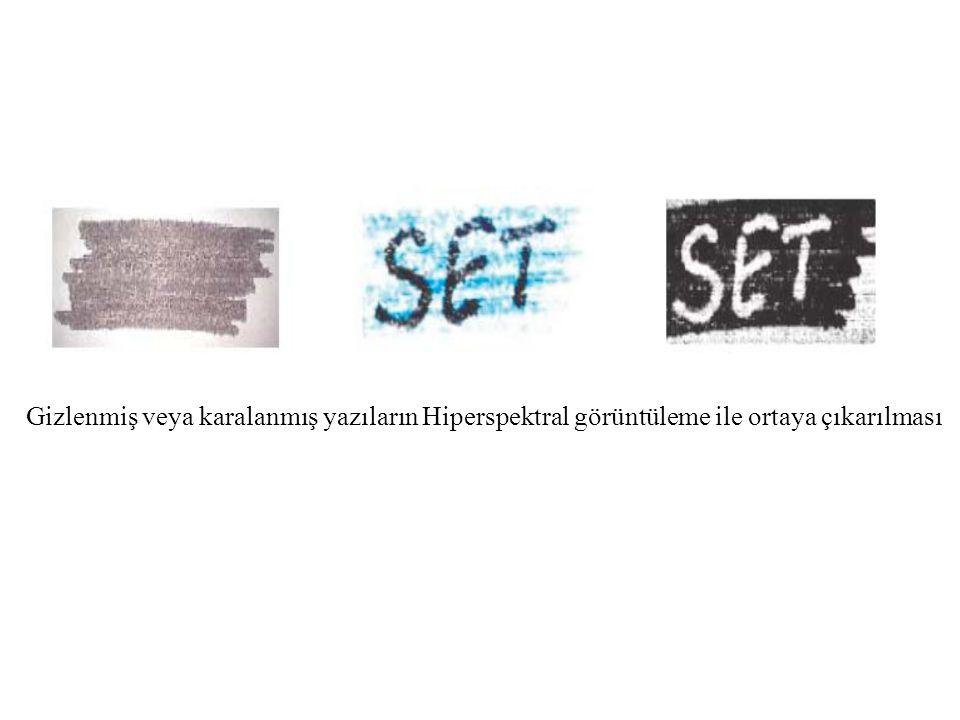 Gizlenmiş veya karalanmış yazıların Hiperspektral görüntüleme ile ortaya çıkarılması