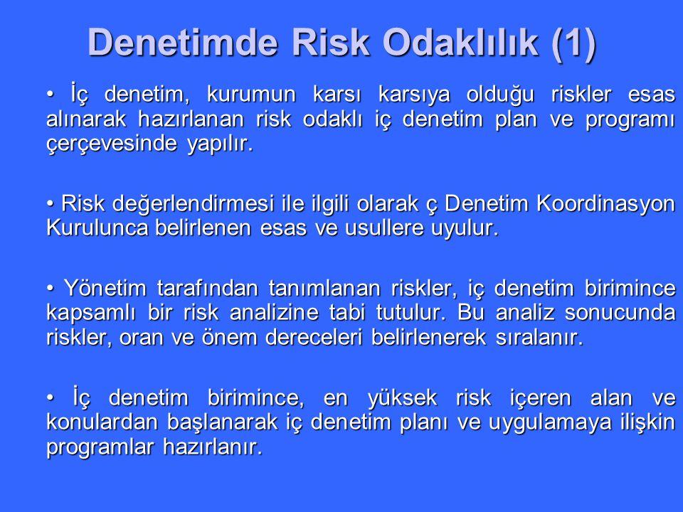 Denetimde Risk Odaklılık (1)