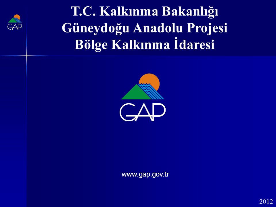 Güneydoğu Anadolu Projesi Bölge Kalkınma İdaresi
