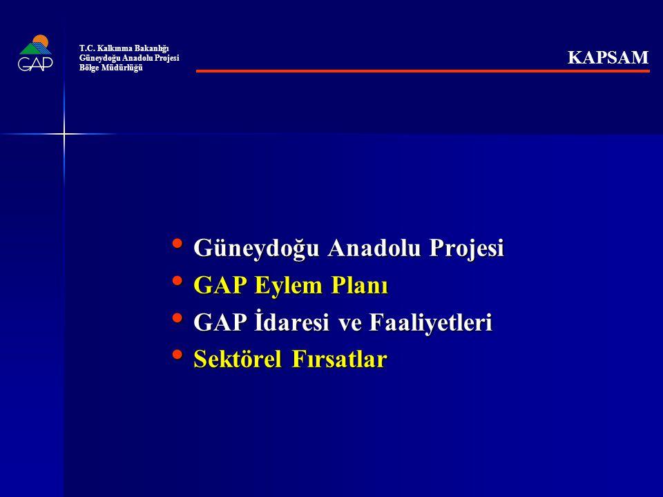 Güneydoğu Anadolu Projesi GAP Eylem Planı GAP İdaresi ve Faaliyetleri