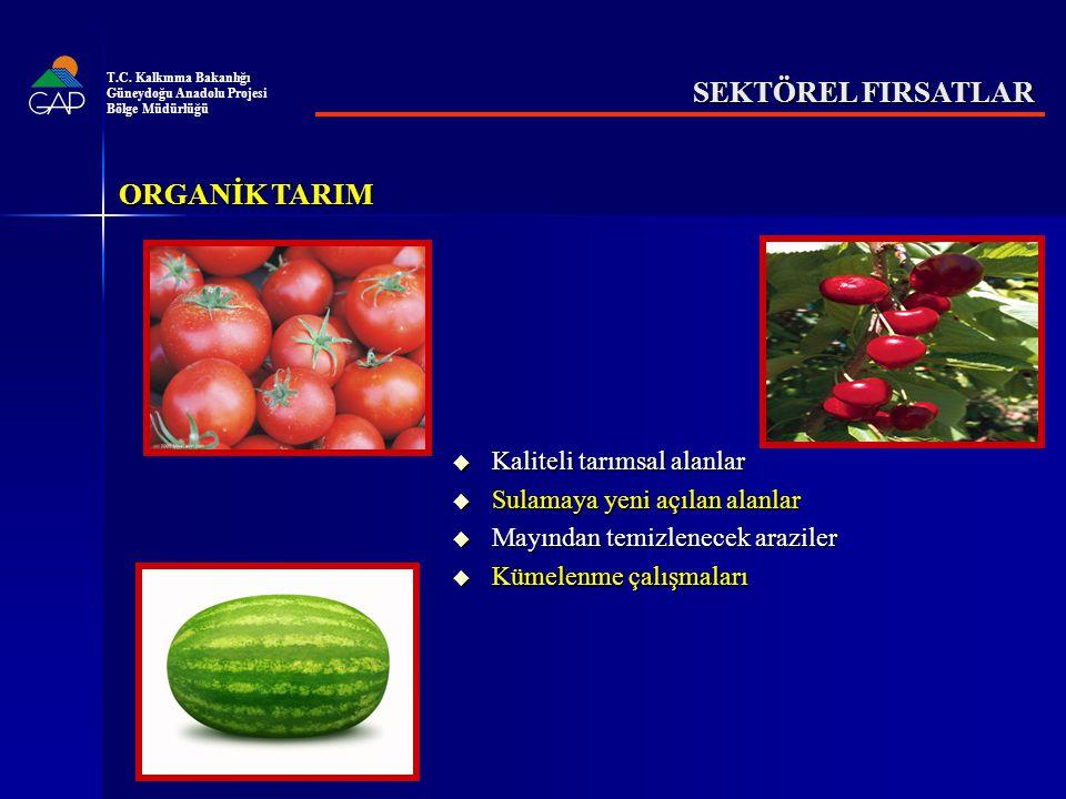 SEKTÖREL FIRSATLAR ORGANİK TARIM Kaliteli tarımsal alanlar