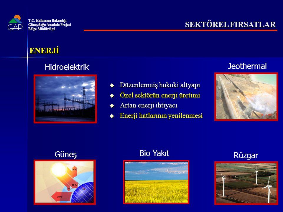 T.C. Kalkınma Bakanlığı Güneydoğu Anadolu Projesi. Bölge Müdürlüğü. SEKTÖREL FIRSATLAR. ENERJİ. Hidroelektrik.