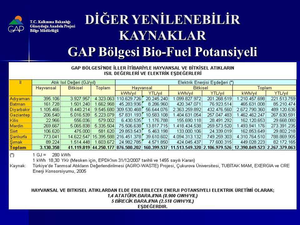 DİĞER YENİLENEBİLİR KAYNAKLAR GAP Bölgesi Bio-Fuel Potansiyeli