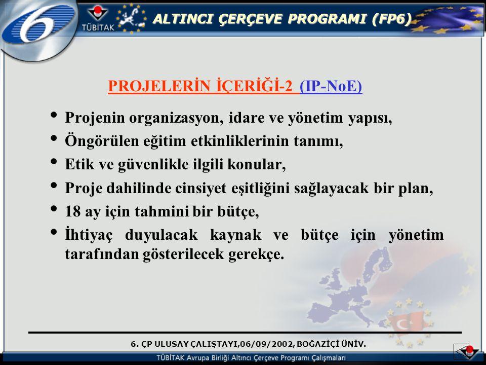 PROJELERİN İÇERİĞİ-2 (IP-NoE)