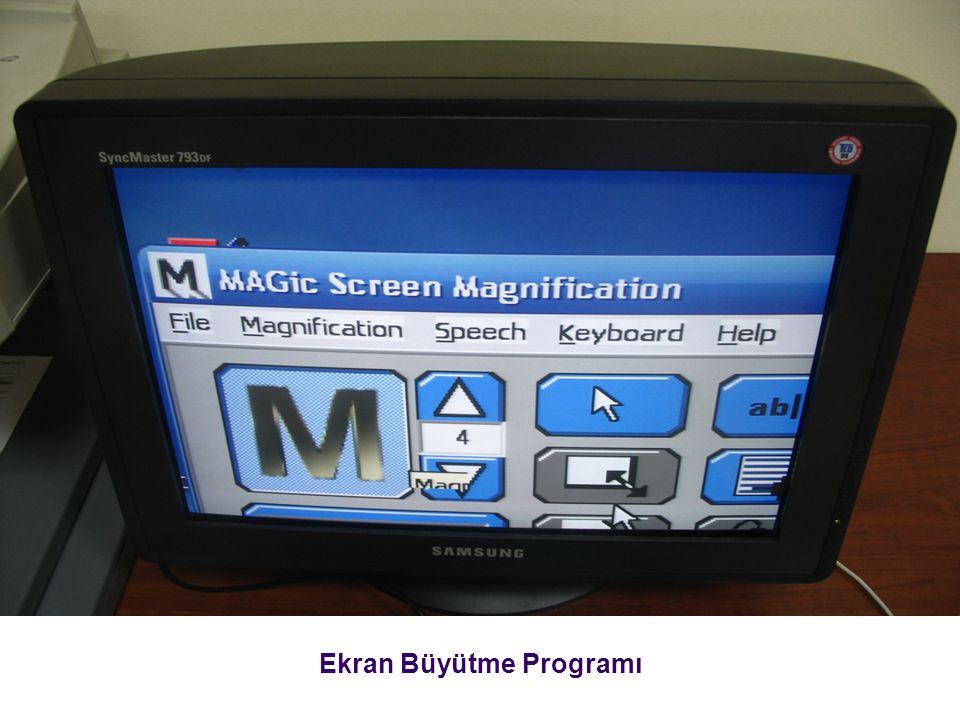 Ekran Büyütme Programı