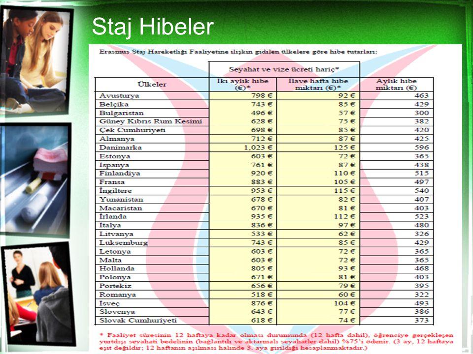 Staj Hibeler