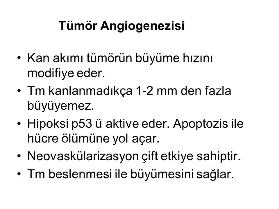 Tümör Angiogenezisi Kan akımı tümörün büyüme hızını modifiye eder. Tm kanlanmadıkça 1-2 mm den fazla büyüyemez.