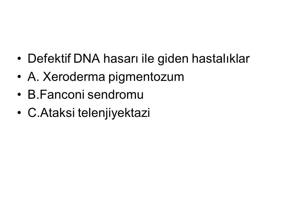 Defektif DNA hasarı ile giden hastalıklar