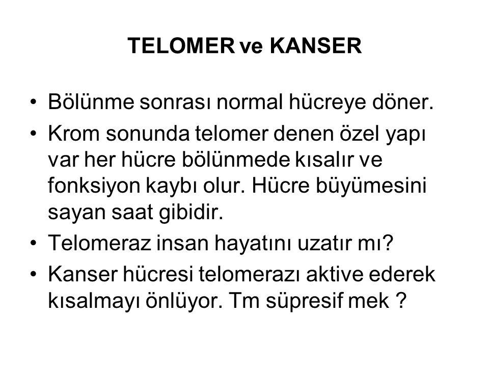 TELOMER ve KANSER Bölünme sonrası normal hücreye döner.