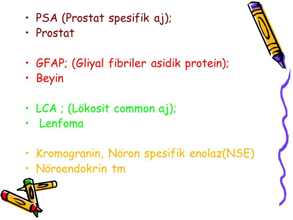 PSA (Prostat spesifik aj);