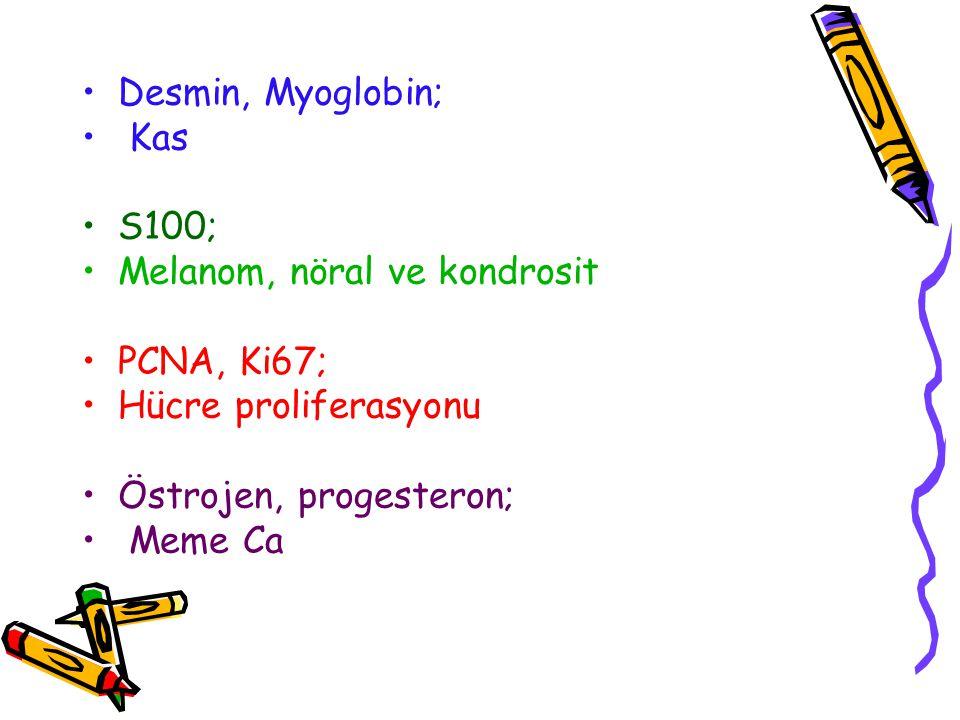 Desmin, Myoglobin; Kas. S100; Melanom, nöral ve kondrosit. PCNA, Ki67; Hücre proliferasyonu. Östrojen, progesteron;