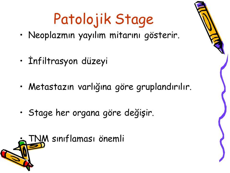 Patolojik Stage Neoplazmın yayılım mitarını gösterir.
