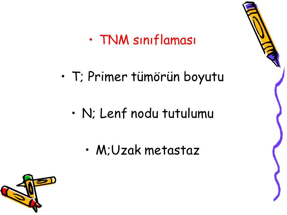 T; Primer tümörün boyutu