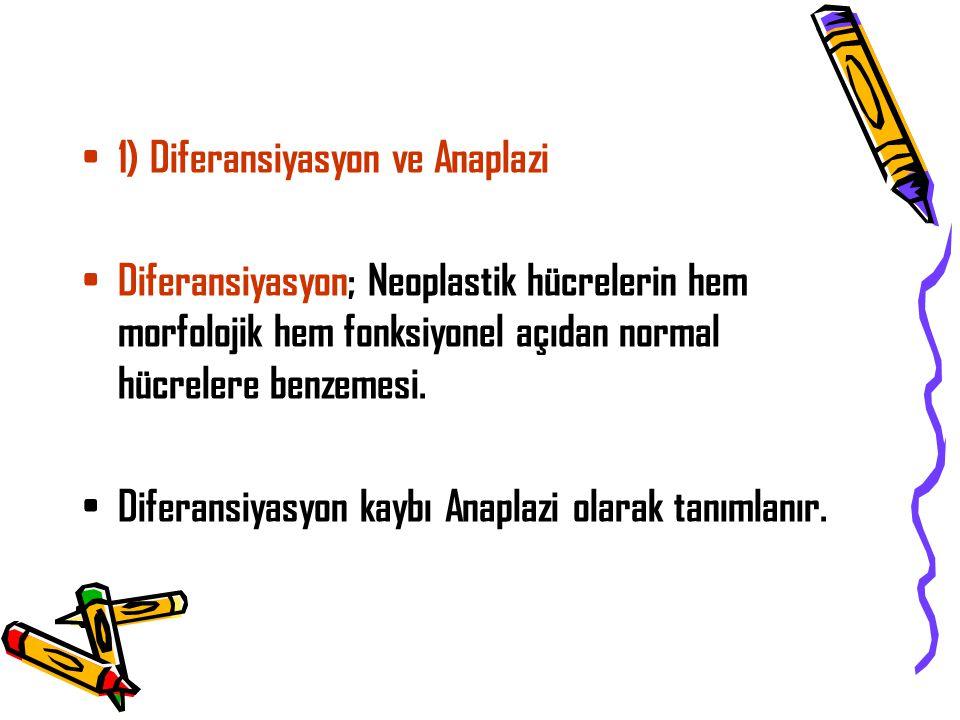 1) Diferansiyasyon ve Anaplazi