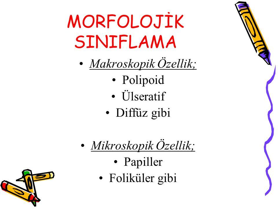 MORFOLOJİK SINIFLAMA Makroskopik Özellik; Polipoid Ülseratif