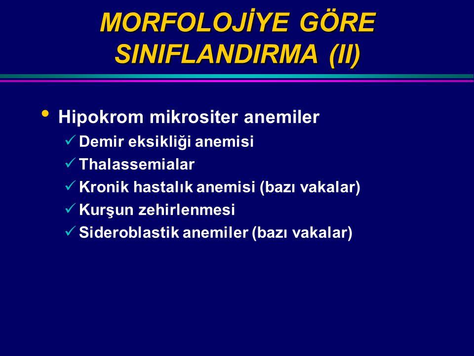 MORFOLOJİYE GÖRE SINIFLANDIRMA (II)