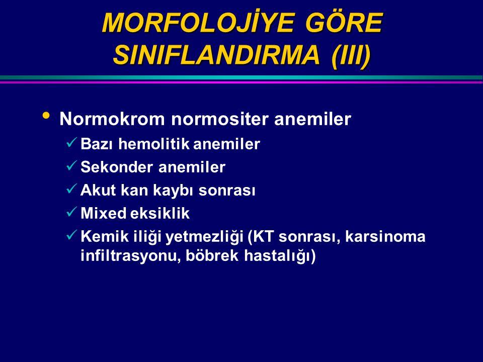 MORFOLOJİYE GÖRE SINIFLANDIRMA (III)