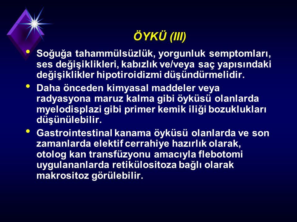 ÖYKÜ (III)
