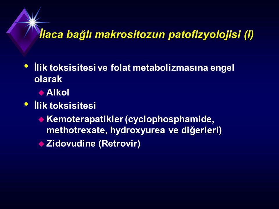 İlaca bağlı makrositozun patofizyolojisi (I)