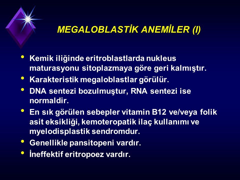 MEGALOBLASTİK ANEMİLER (I)