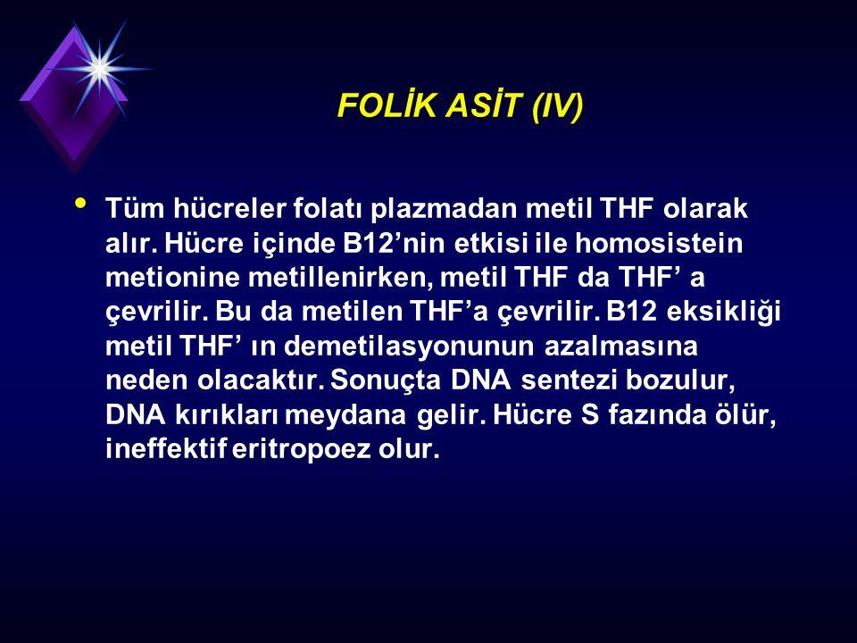 FOLİK ASİT (IV)