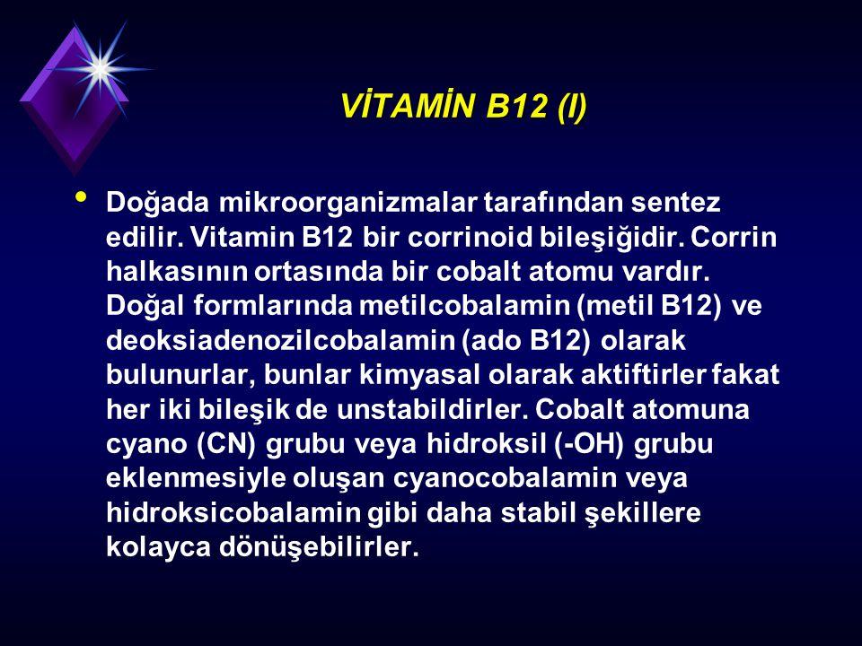 VİTAMİN B12 (I)