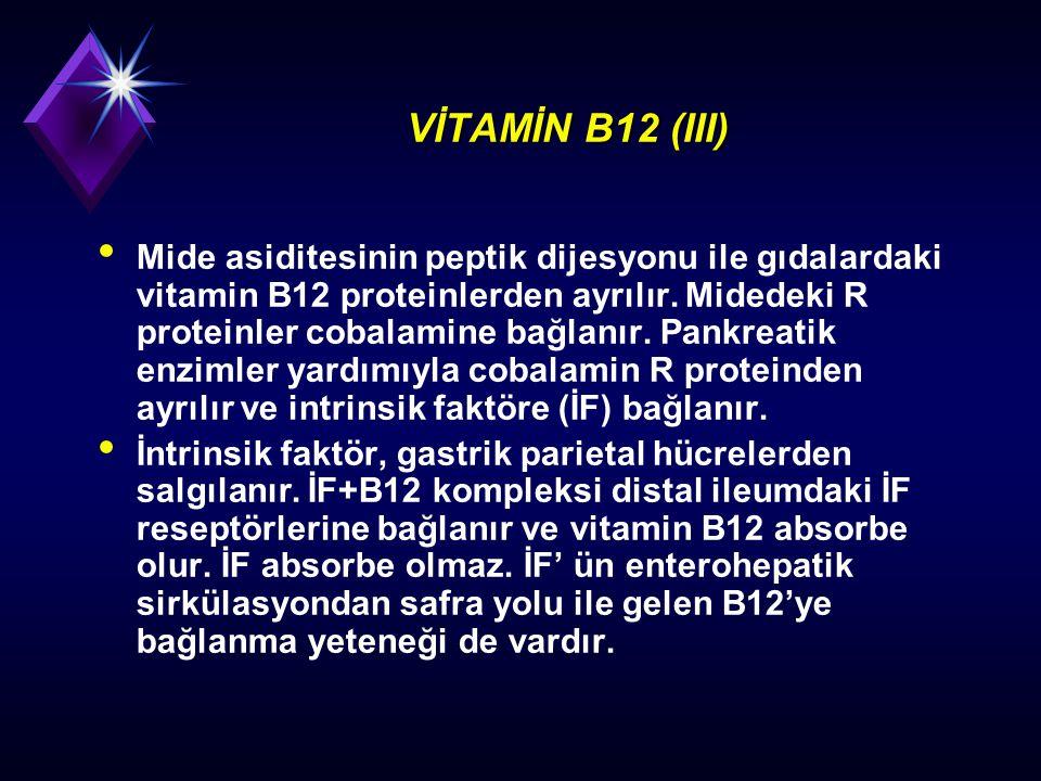 VİTAMİN B12 (III)