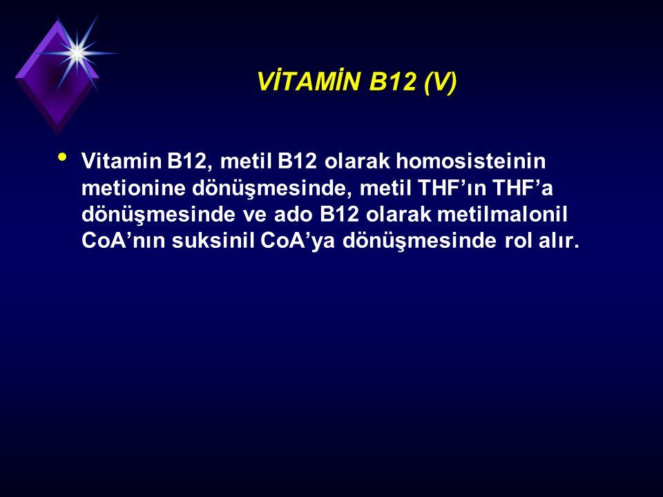 VİTAMİN B12 (V)