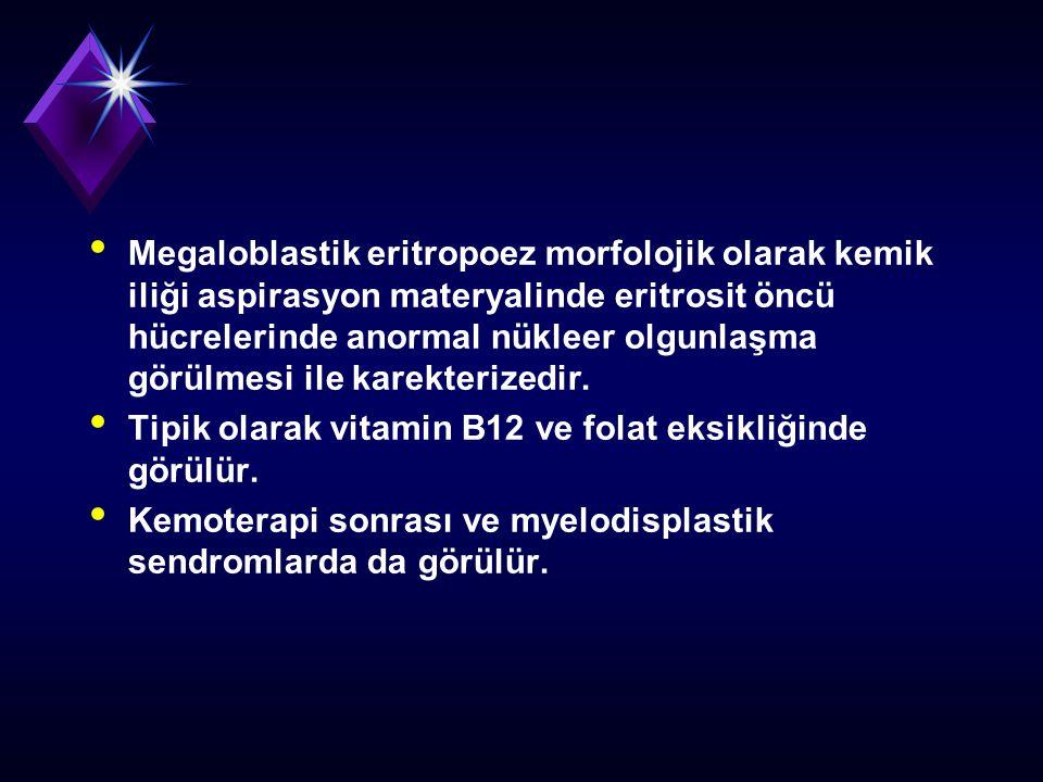 Megaloblastik eritropoez morfolojik olarak kemik iliği aspirasyon materyalinde eritrosit öncü hücrelerinde anormal nükleer olgunlaşma görülmesi ile karekterizedir.