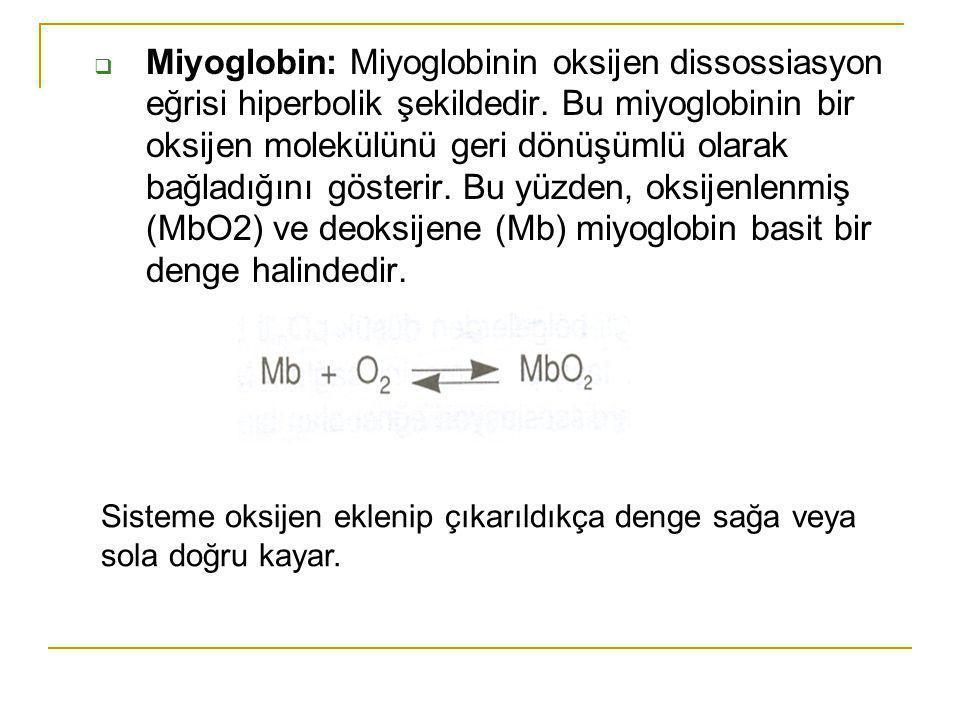 Miyoglobin: Miyoglobinin oksijen dissossiasyon eğrisi hiperbolik şekildedir. Bu miyoglobinin bir oksijen molekülünü geri dönüşümlü olarak bağladığını gösterir. Bu yüzden, oksijenlenmiş (MbO2) ve deoksijene (Mb) miyoglobin basit bir denge halindedir.