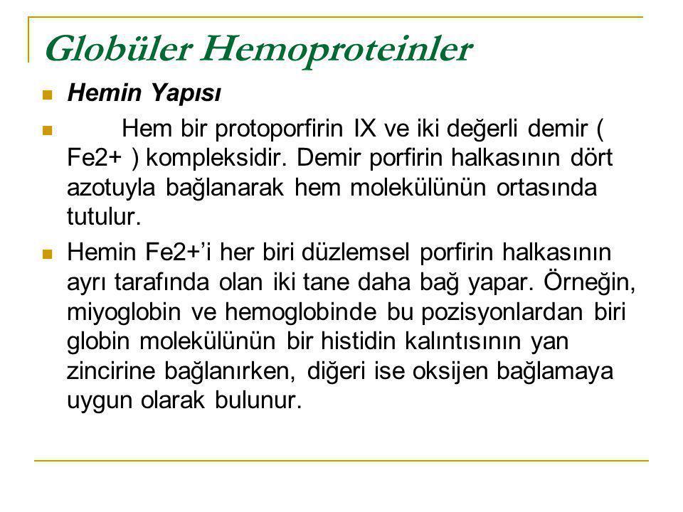 Globüler Hemoproteinler