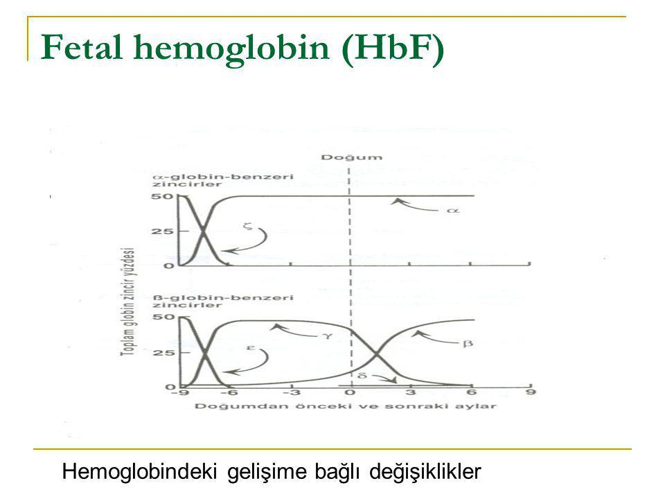 Fetal hemoglobin (HbF)
