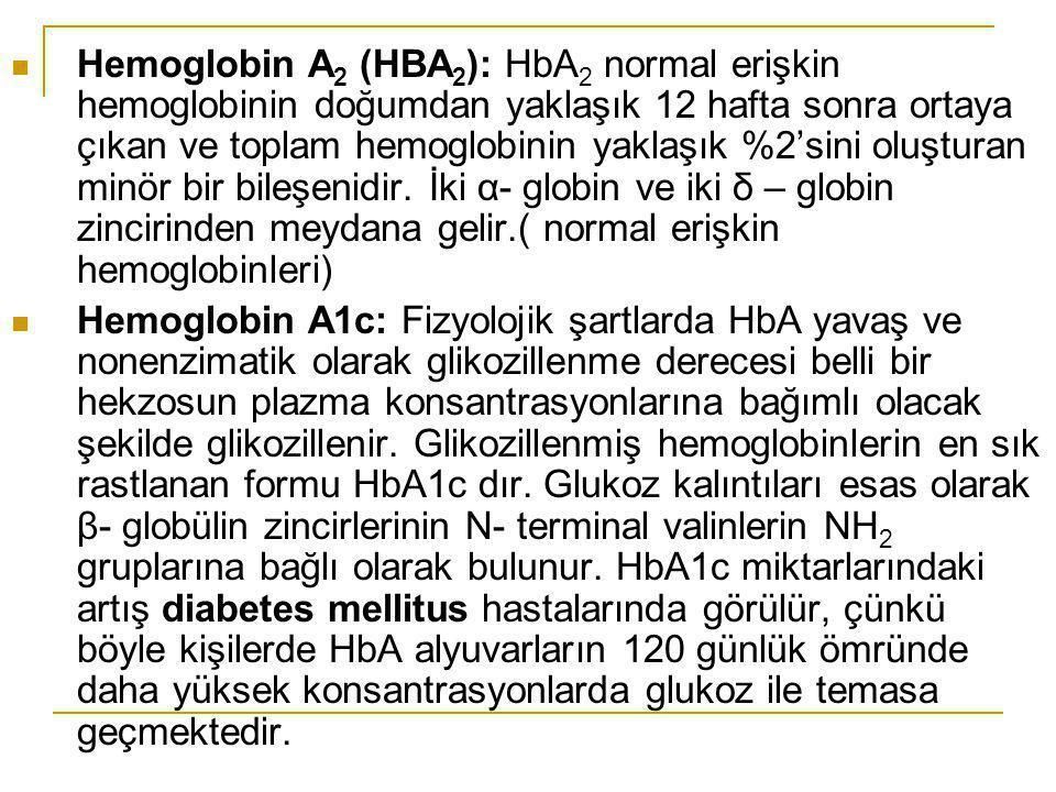 Hemoglobin A2 (HBA2): HbA2 normal erişkin hemoglobinin doğumdan yaklaşık 12 hafta sonra ortaya çıkan ve toplam hemoglobinin yaklaşık %2'sini oluşturan minör bir bileşenidir. İki α- globin ve iki δ – globin zincirinden meydana gelir.( normal erişkin hemoglobinleri)