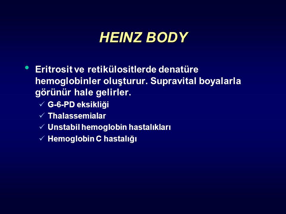 HEINZ BODY Eritrosit ve retikülositlerde denatüre hemoglobinler oluşturur. Supravital boyalarla görünür hale gelirler.