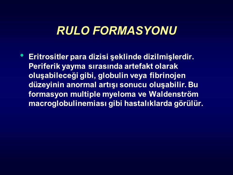 RULO FORMASYONU