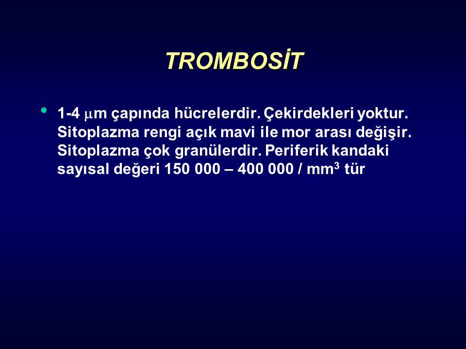 TROMBOSİT