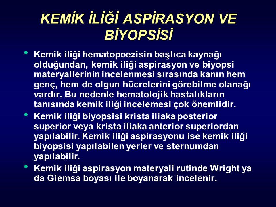 KEMİK İLİĞİ ASPİRASYON VE BİYOPSİSİ