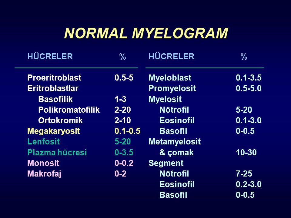 NORMAL MYELOGRAM HÜCRE LER % Proeritroblast 0.5-5 Eritroblastlar