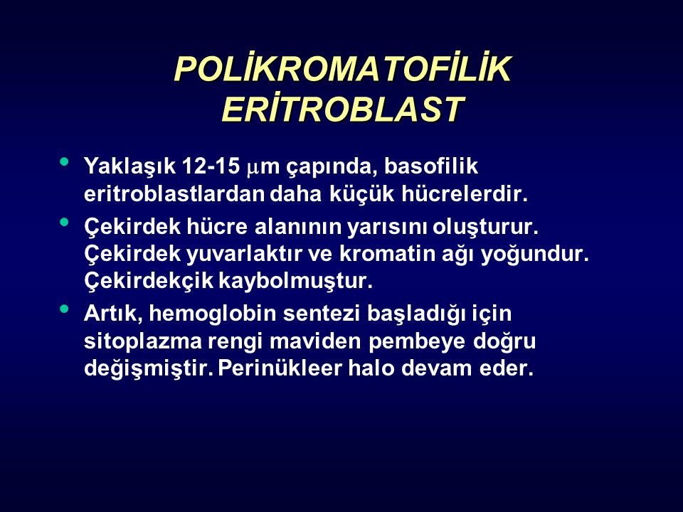 POLİKROMATOFİLİK ERİTROBLAST