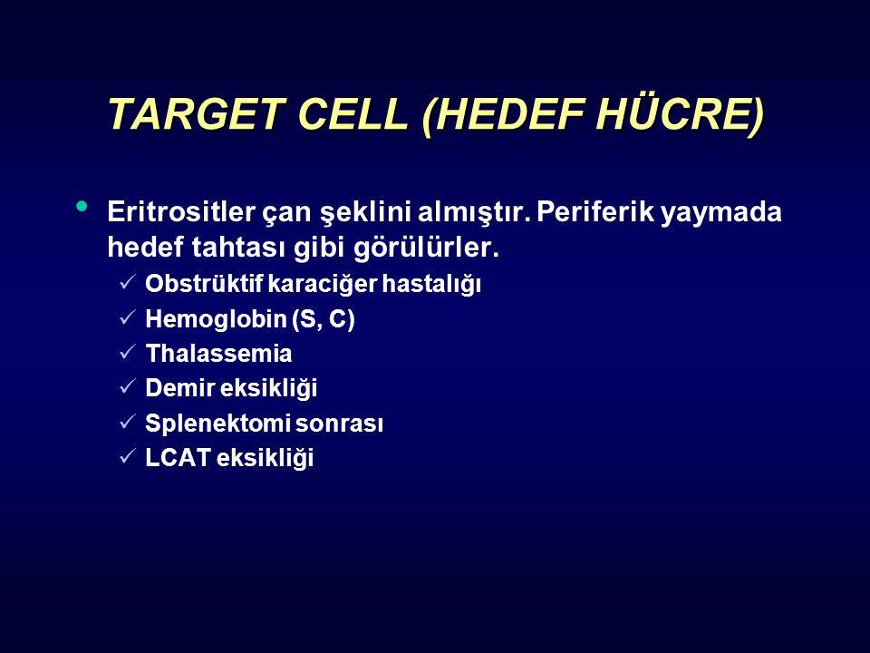 TARGET CELL (HEDEF HÜCRE)