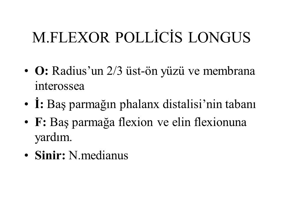 M.FLEXOR POLLİCİS LONGUS