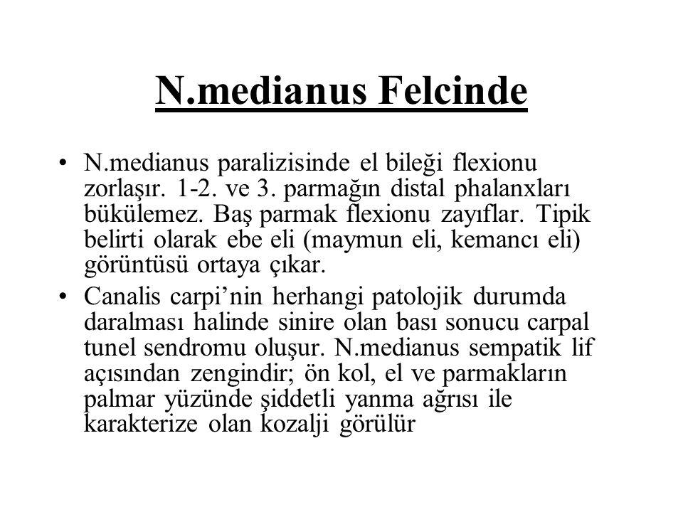 N.medianus Felcinde