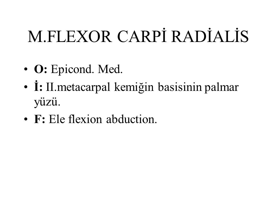 M.FLEXOR CARPİ RADİALİS