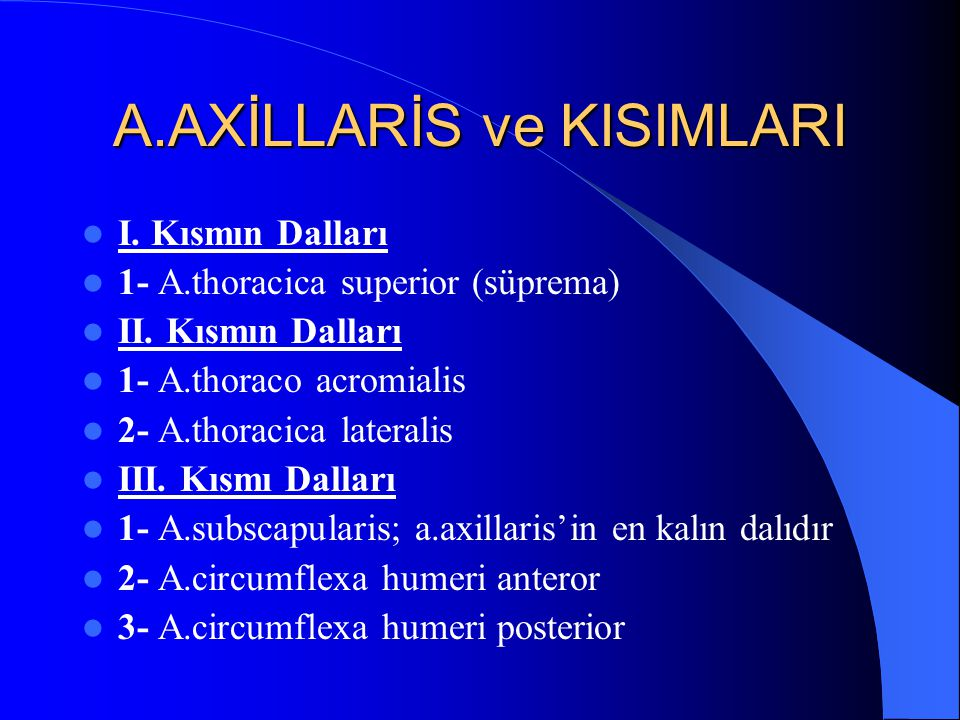 A.AXİLLARİS ve KISIMLARI