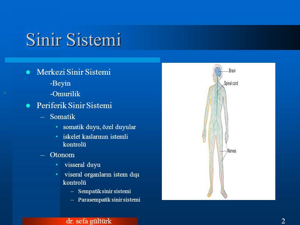 Sinir Sistemi Merkezi Sinir Sistemi Periferik Sinir Sistemi -Beyin