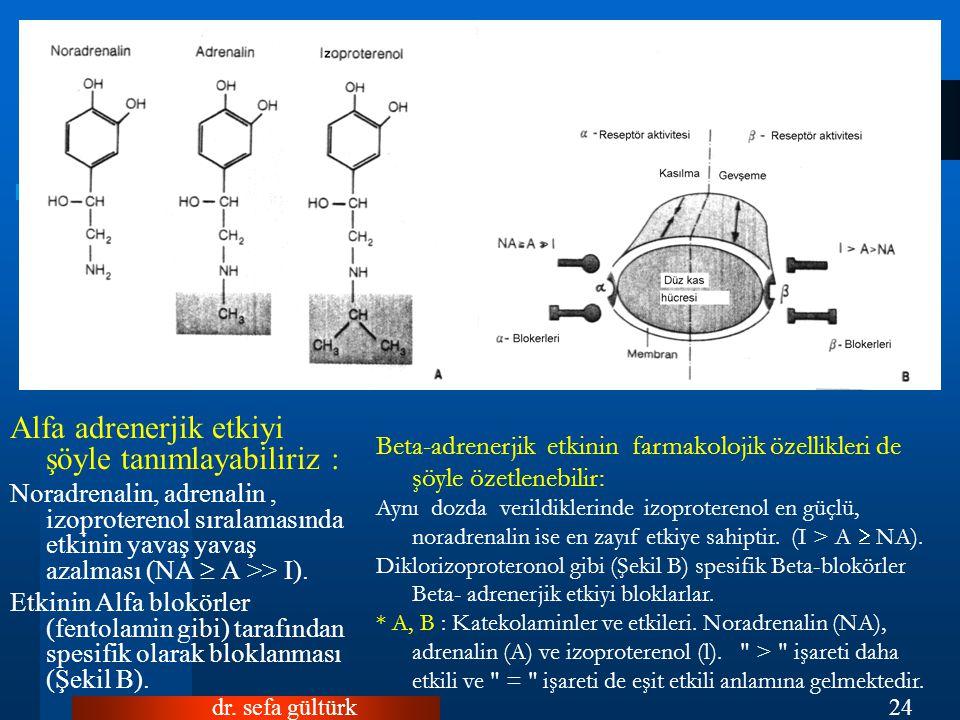 Alfa adrenerjik etkiyi şöyle tanımlayabiliriz :