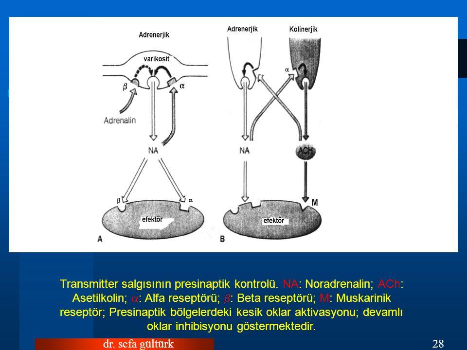 Transmitter salgısının presinaptik kontrolü