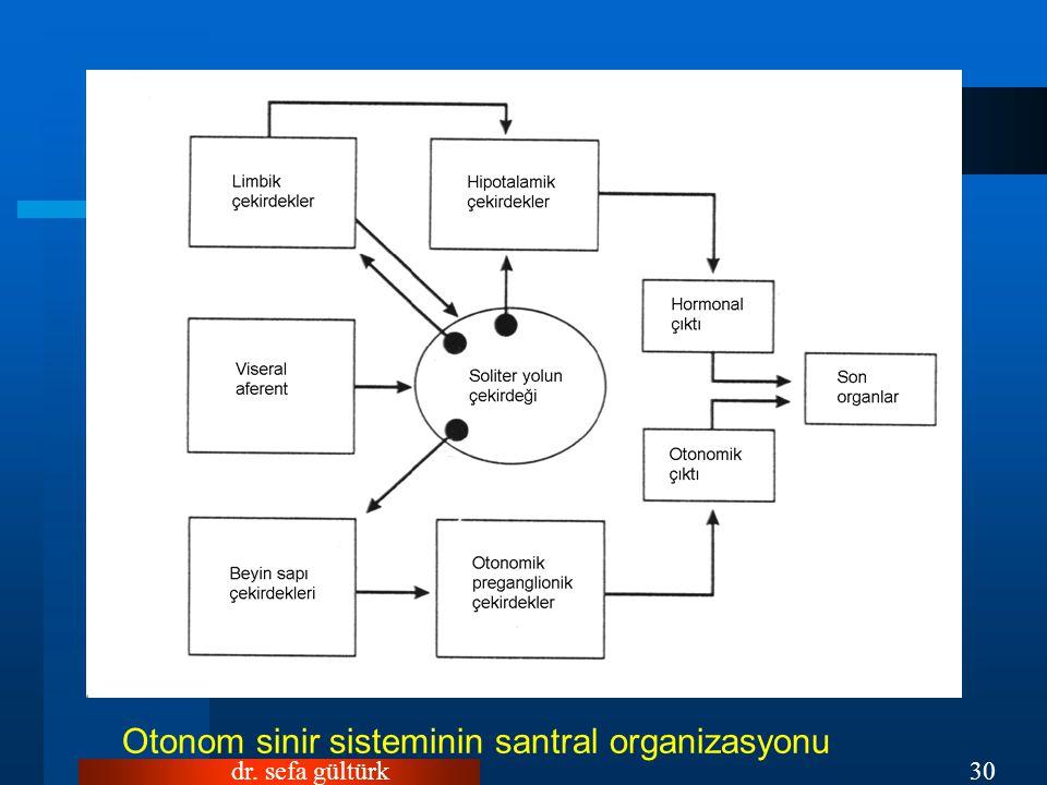Otonom sinir sisteminin santral organizasyonu