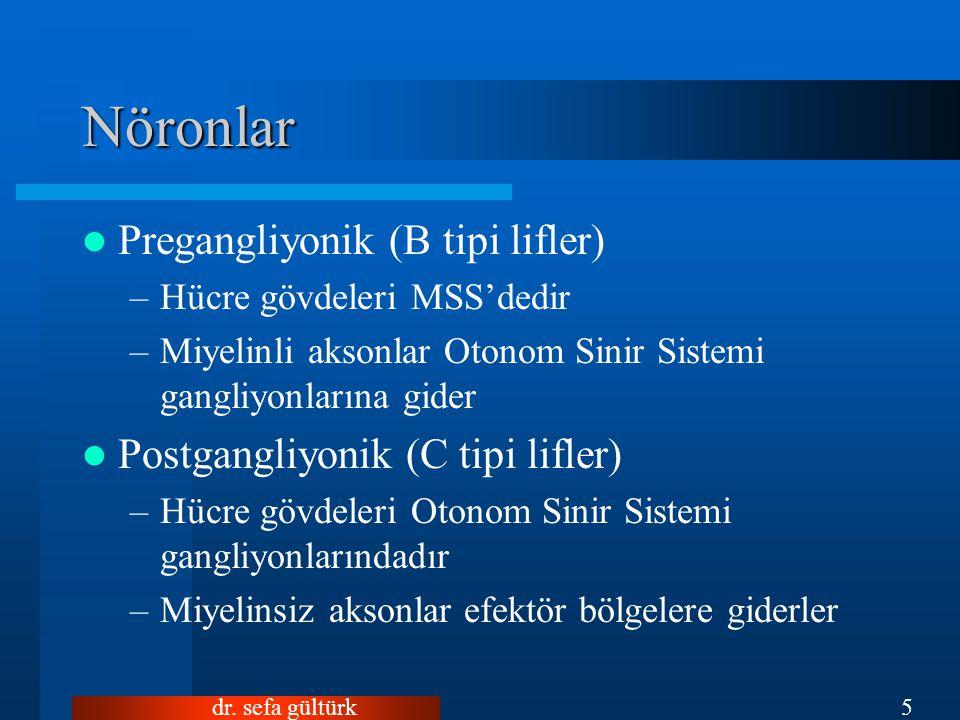 Nöronlar Pregangliyonik (B tipi lifler)