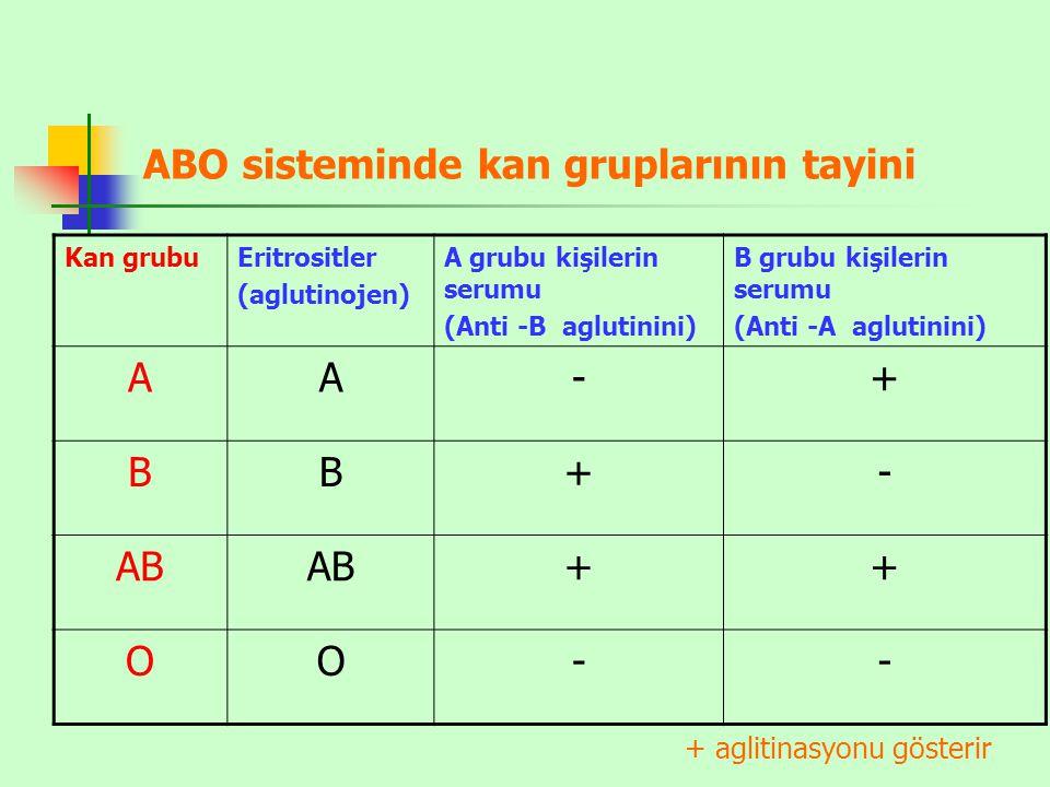 ABO sisteminde kan gruplarının tayini